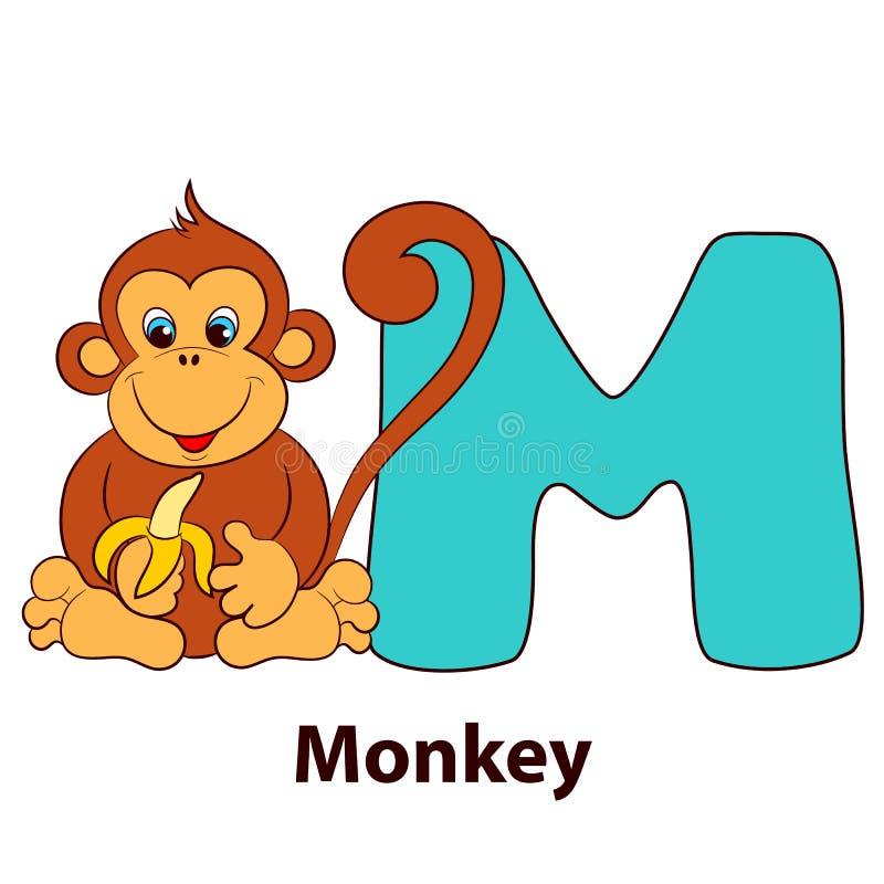 Illustrerad alfabetbokstav M och apa vektor illustrationer