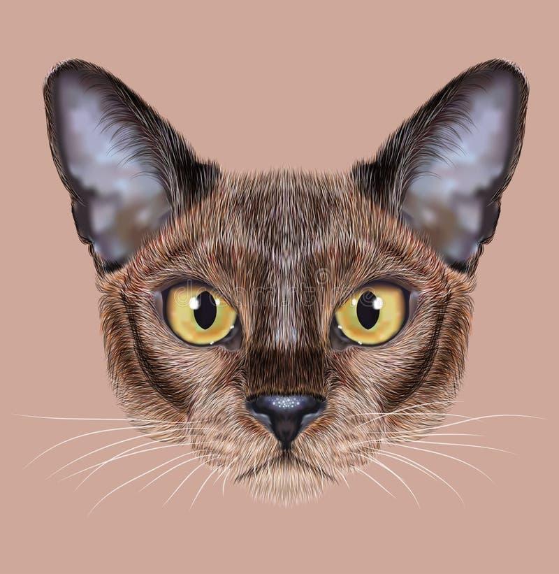 Illustrerad stående av den Burmese katten royaltyfri illustrationer
