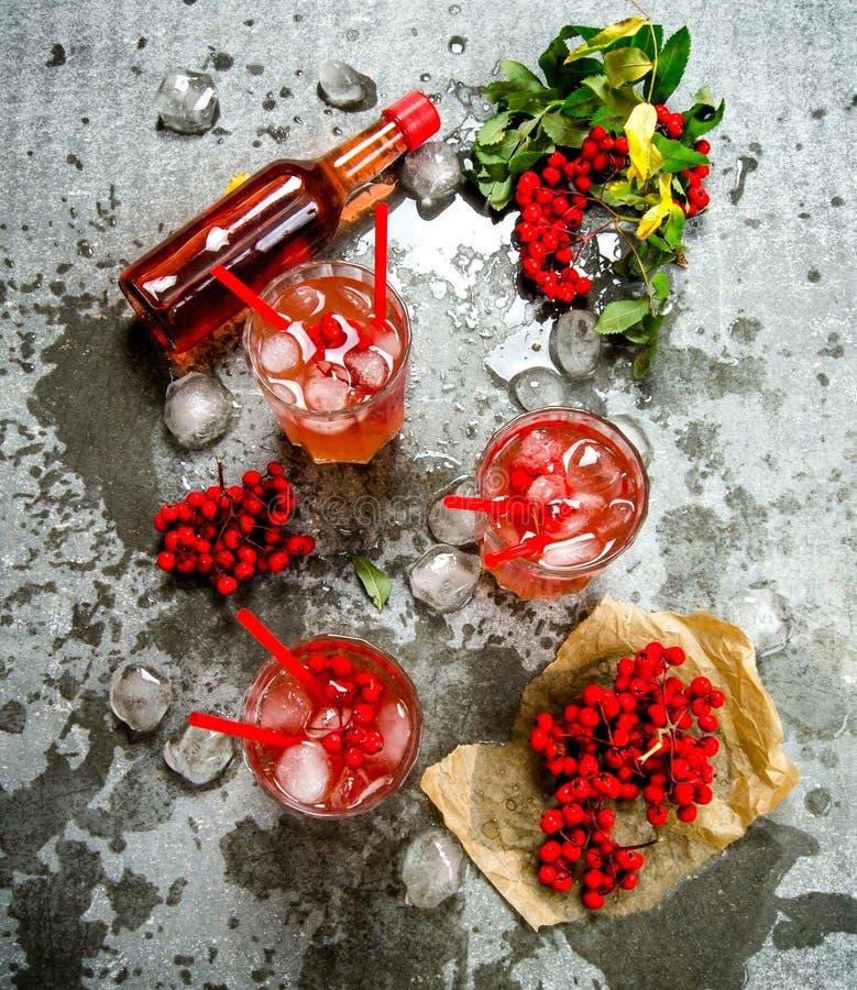 illustrstion τρία πάγου κοκτέιλ διάνυσμα Συστατικά - ποτό, μούρα, χυμός, και καθαρό νερό στον πίνακα πετρών στοκ φωτογραφία