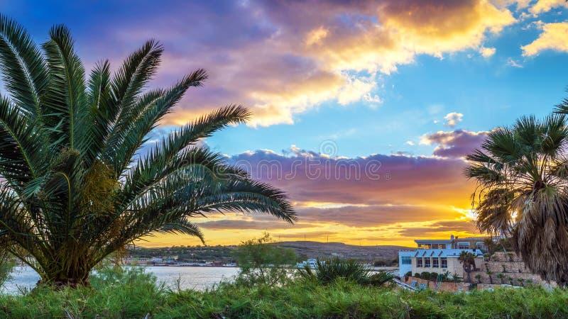 IlMellieha,马耳他-在Mellieha海滩的美好的日落场面与棕榈树 免版税库存照片