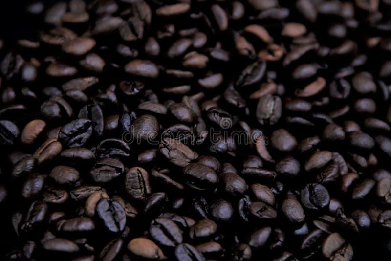 Ilości fotografia kakaowe fasole obraz royalty free
