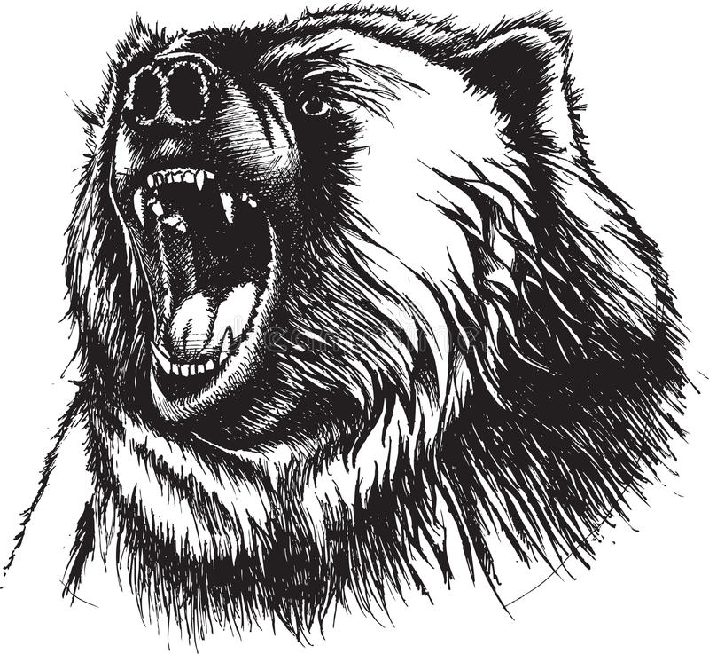 ilsken björn stock illustrationer