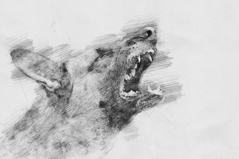 Ilsken hund Skissa med blyertspennan royaltyfri illustrationer
