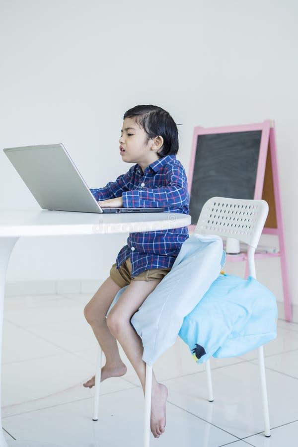 Ilsken pys som använder en bärbar dator royaltyfri bild