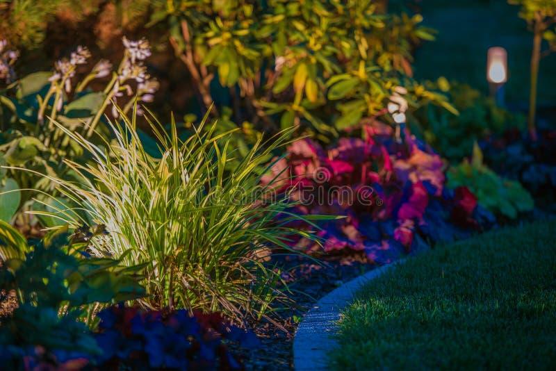 Iluminação da noite do jardim foto de stock royalty free
