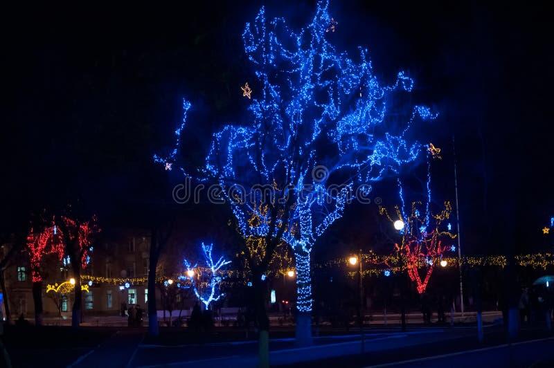 Iluminação do inverno em um parque foto de stock