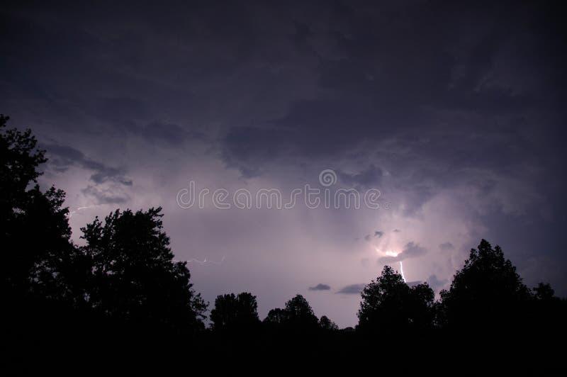Iluminação e árvores 2 imagens de stock