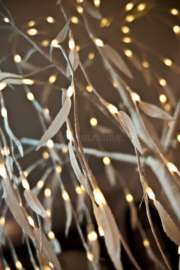 Iluminação elegante do diodo emissor de luz do Natal no formulário de ramos de árvore delicados foto de stock royalty free