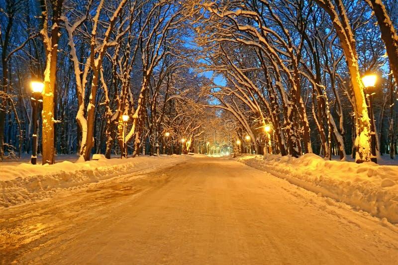 Iluminação na aléia do inverno, potência da noite, fotografia de stock royalty free