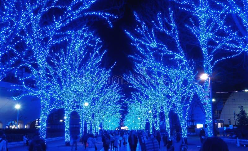 Iluminación azul de la cueva, parque del yoyogi, Tokio imagenes de archivo
