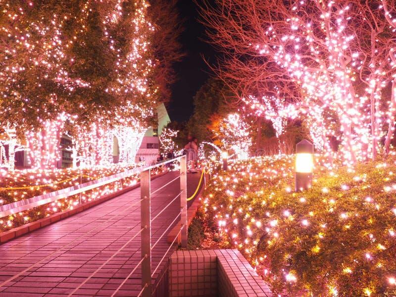 Iluminación de la Navidad en Tokio, Shinjuku fotos de archivo