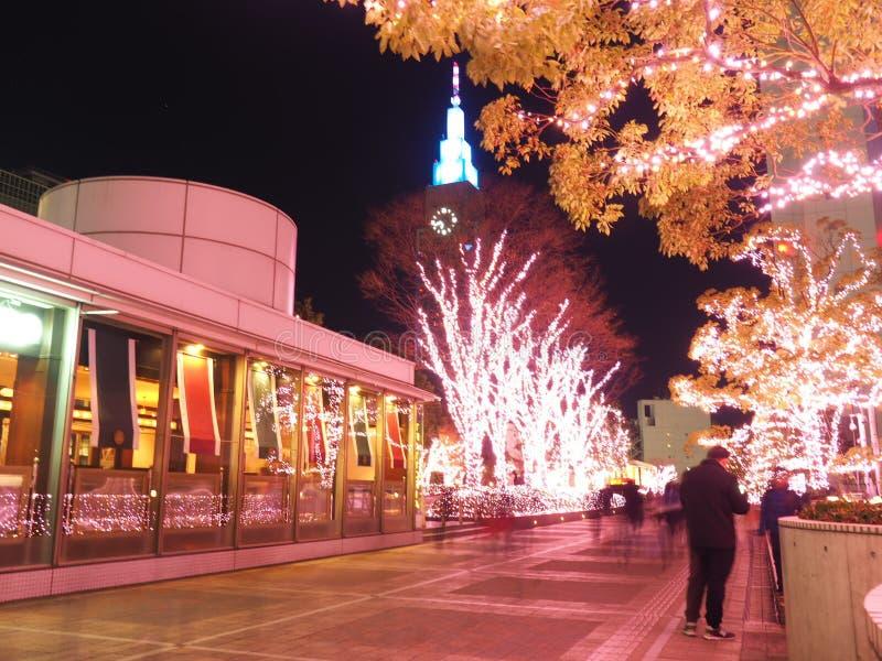 Iluminación de la Navidad en Tokio, Shinjuku imagenes de archivo