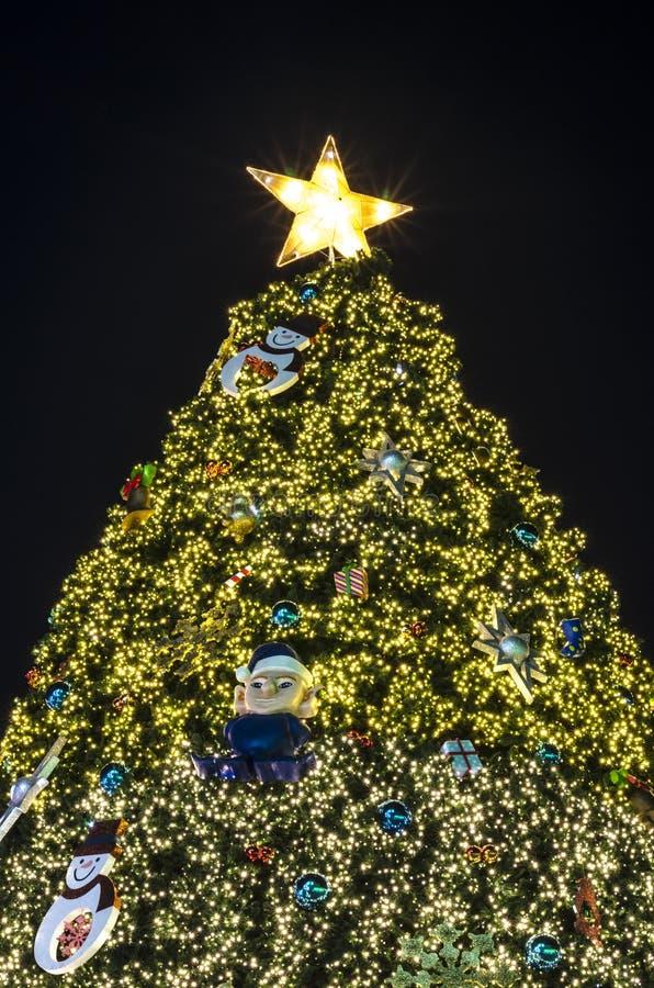 Iluminación del árbol de navidad fotos de archivo