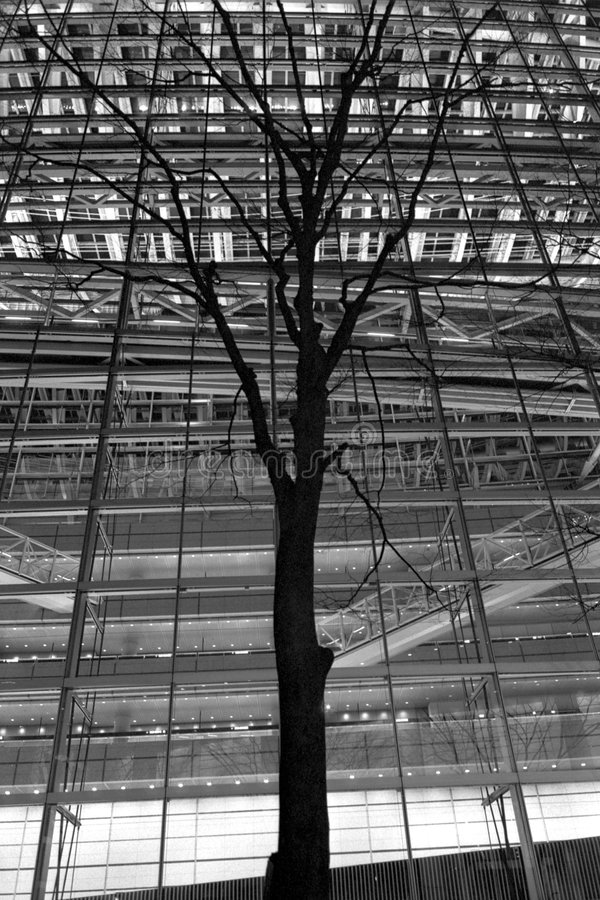 Iluminación del árbol y del edificio fotos de archivo