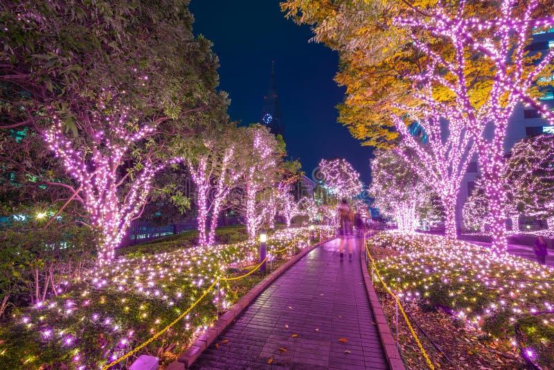 Iluminación del invierno en Tokio, Japón foto de archivo