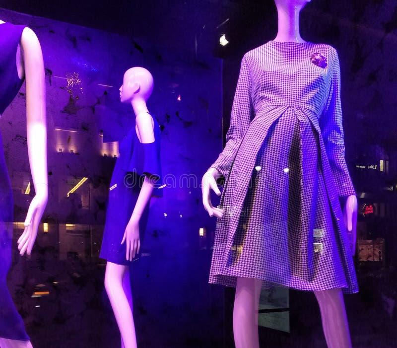 Iluminación púrpura en una ventana de tienda, tendencias de la moda, NYC, NY, los E.E.U.U.