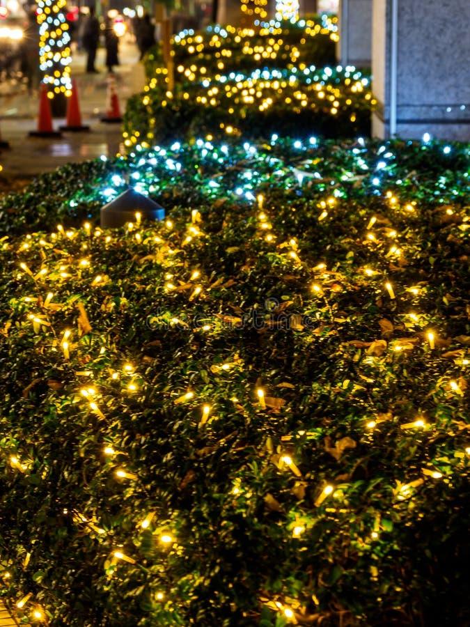 Iluminación Tokio de la opinión de la noche de Japón fotografía de archivo libre de regalías