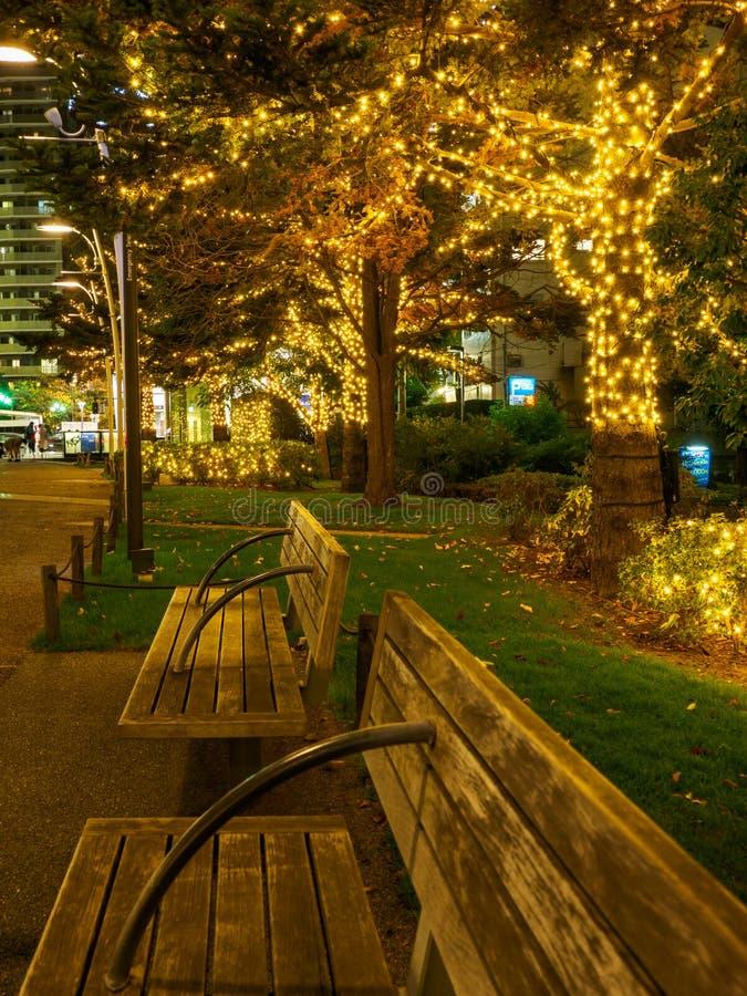 Iluminación Tokio de la opinión de la noche de Japón fotos de archivo