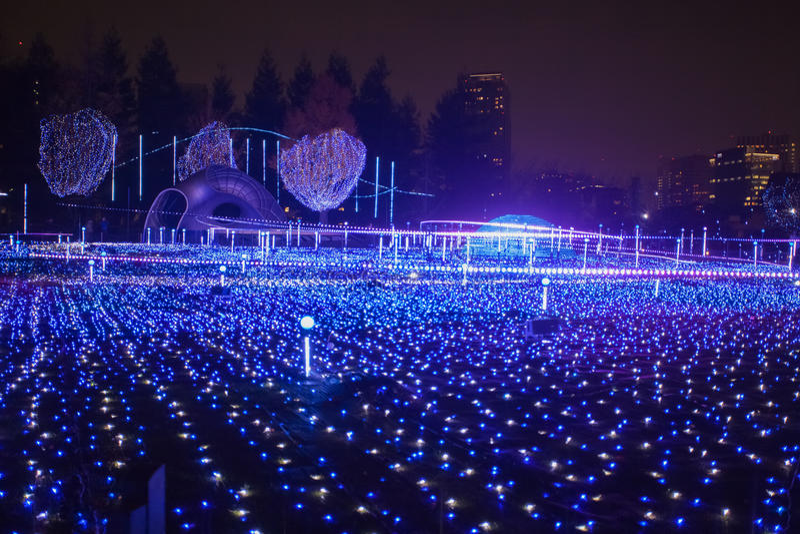 Iluminaciones de la estación de la Navidad y del invierno de Tokio fotografía de archivo libre de regalías