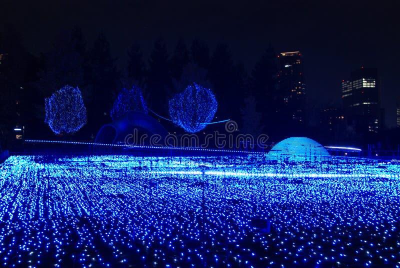 Iluminaciones del invierno en Tokio fotos de archivo libres de regalías