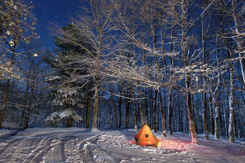 Iluminando a barraca em madeiras nevados do parque de Nebrodi, Sicília fotografia de stock