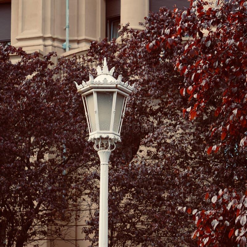 Iluminazione pubblica nella via nella citt? di Bilbao immagine stock