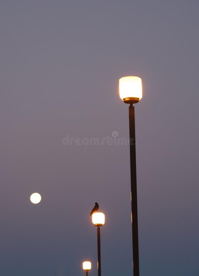 Iluminazioni pubbliche con la luna piena immagini stock libere da diritti
