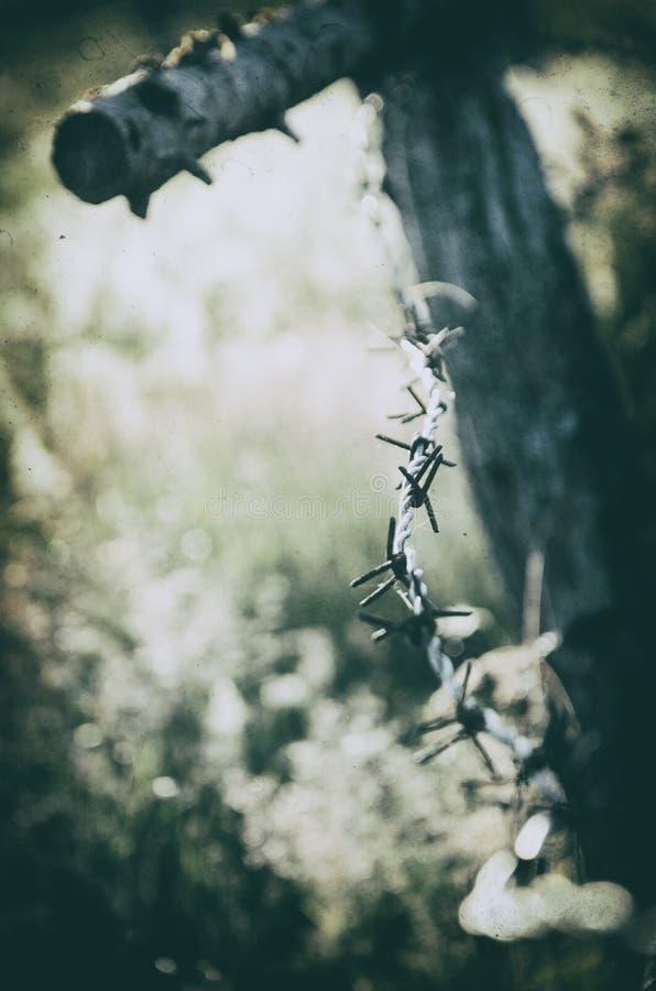 Ilustração abstrata do arame farpado fotografia de stock royalty free