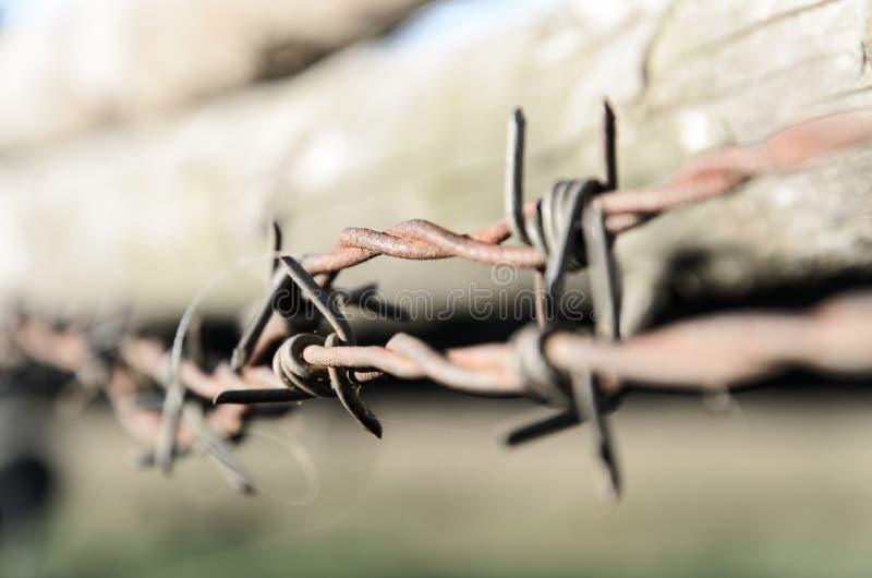 Ilustração abstrata do arame farpado imagem de stock royalty free