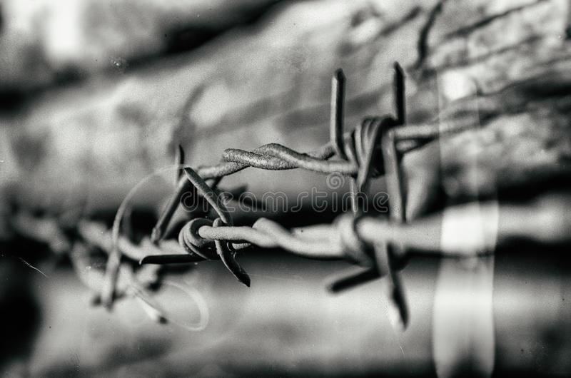 Ilustração abstrata do arame farpado imagens de stock