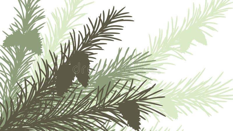 Ilustração abstrata horizontal do ramo spruce. ilustração do vetor