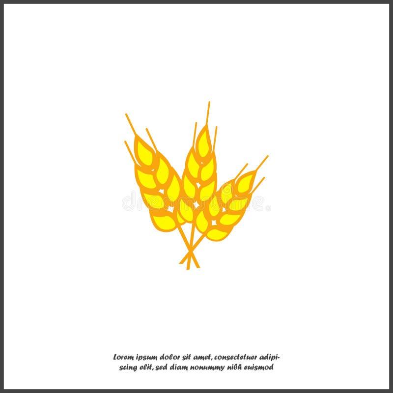 Ilustração amarela do vetor dos cereais do trigo Orelhas orgânicas da grão O símbolo do trigo é alimento saudável no fundo isolad ilustração do vetor