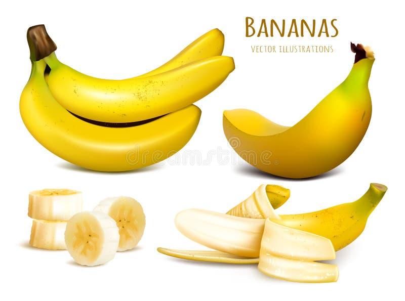 Ilustração amarela madura do vetor das bananas ilustração do vetor