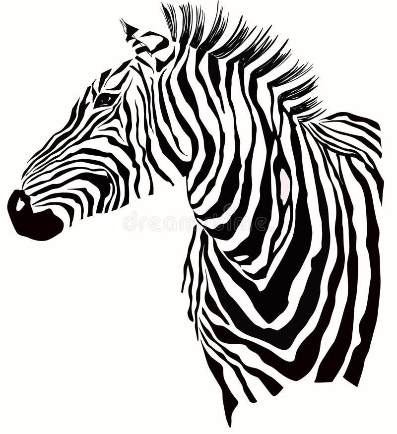 Ilustração animal da silhueta da zebra ilustração stock