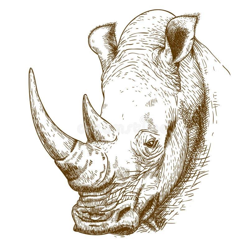 Ilustração antiga da gravura do rinoceronte ilustração do vetor