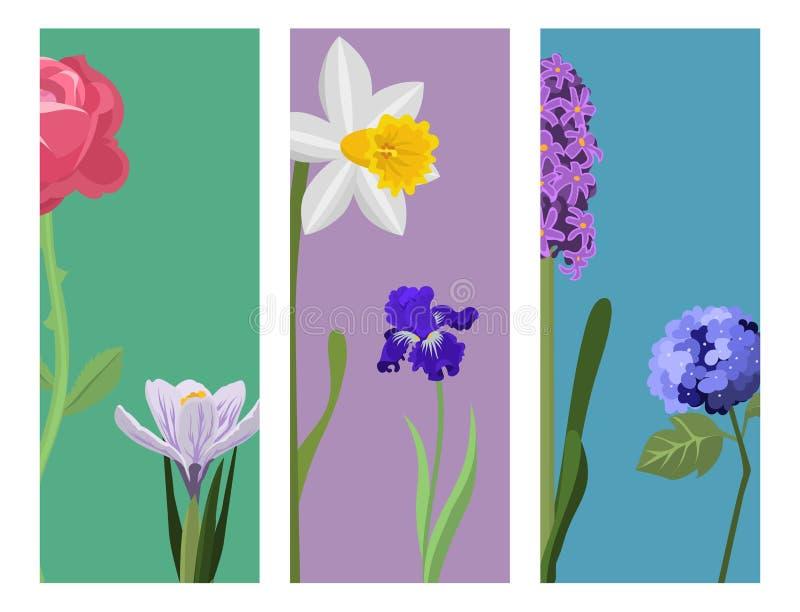 Ilustração botânica do vetor do projeto da natureza do ramalhete da decoração da pétala do ramo dos cartões da pintura da flor da ilustração stock