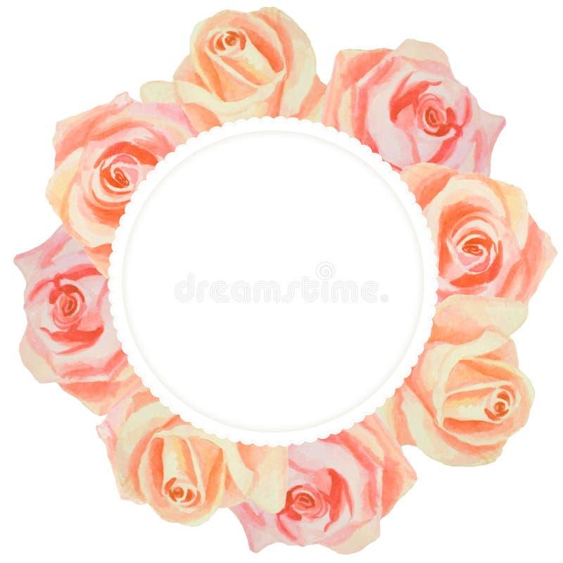 Ilustração botânica do vintage para seus convite e felicitações Ch?-rosa ilustração royalty free