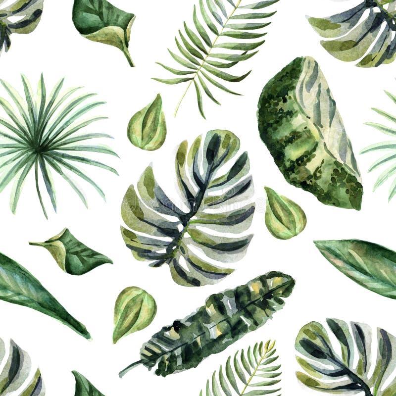 Ilustração brilhante do verão da aquarela com flores tropicais ilustração do vetor