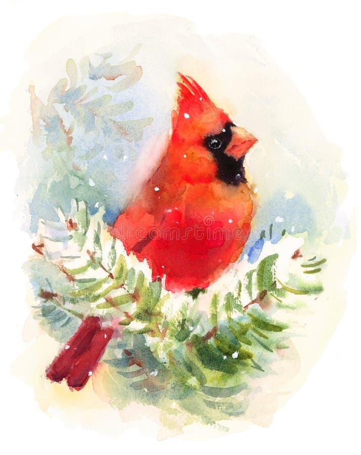 Ilustração cardinal de Bird Watercolor Winter pintado à mão ilustração royalty free