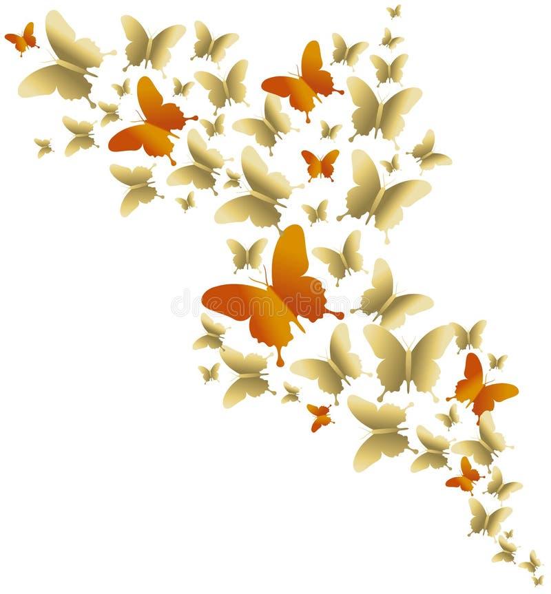 Ilustração colorida da mola da borboleta do ouro bonito ilustração stock