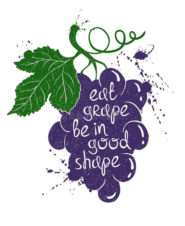 Ilustração colorida da silhueta do ramo da uva ilustração do vetor