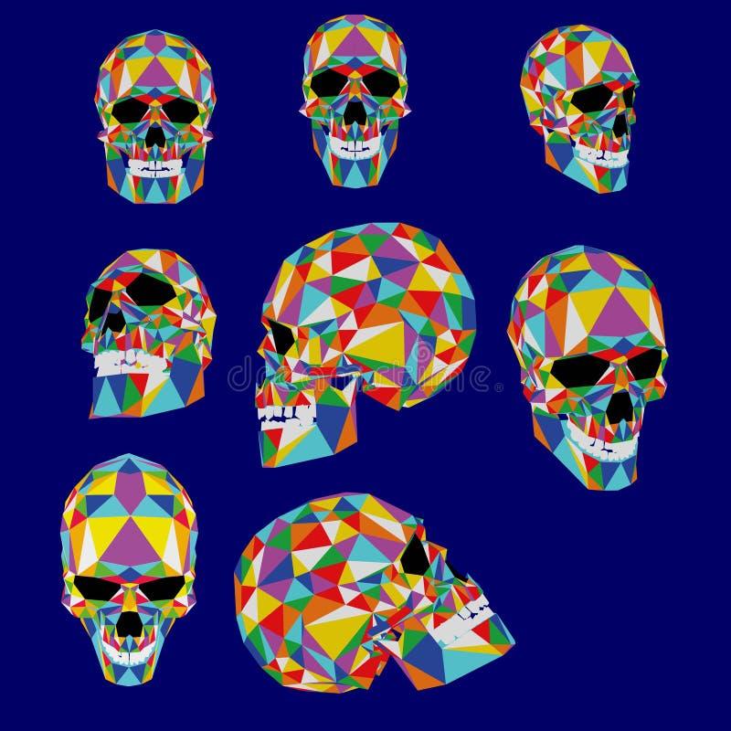 Ilustração colorida do crânio dos polígono Tipografia, gráficos do t-shirt, vetores ilustração stock