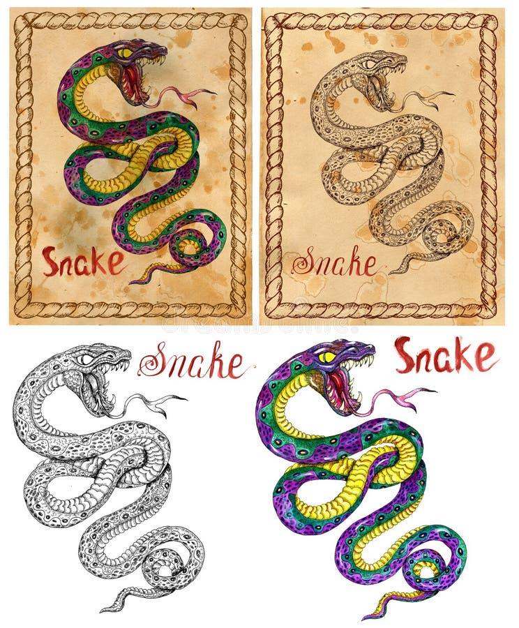 Ilustração com animal do zodíaco - serpente ilustração royalty free