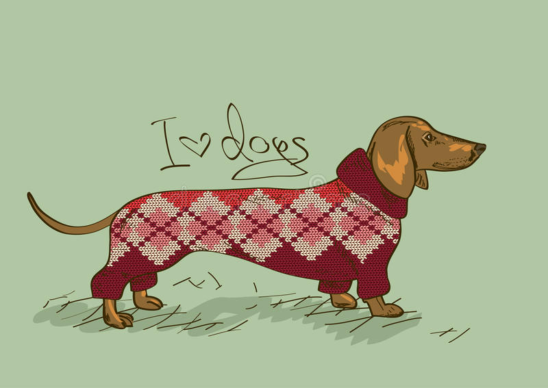 Ilustração com cão do bassê ilustração stock