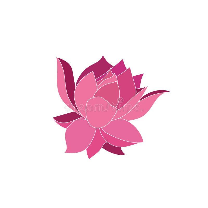 Ilustração cor-de-rosa do vetor da flor isolada no fundo branco ilustração do vetor