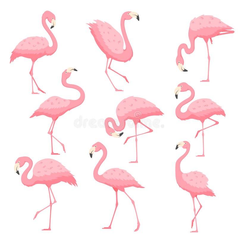 Ilustração cor-de-rosa dos desenhos animados do vetor do flamingo ilustração royalty free