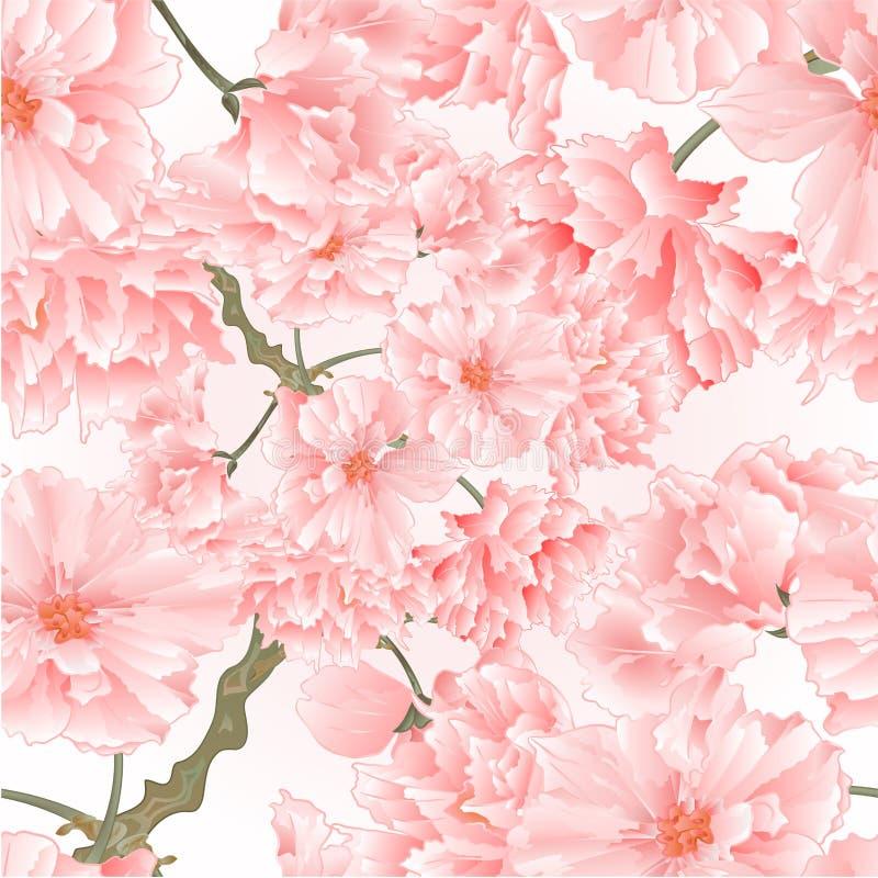 Ilustração cor-de-rosa natural do vetor do fundo do vintage sem emenda das flores de sakura da árvore do galho da textura editáve ilustração do vetor