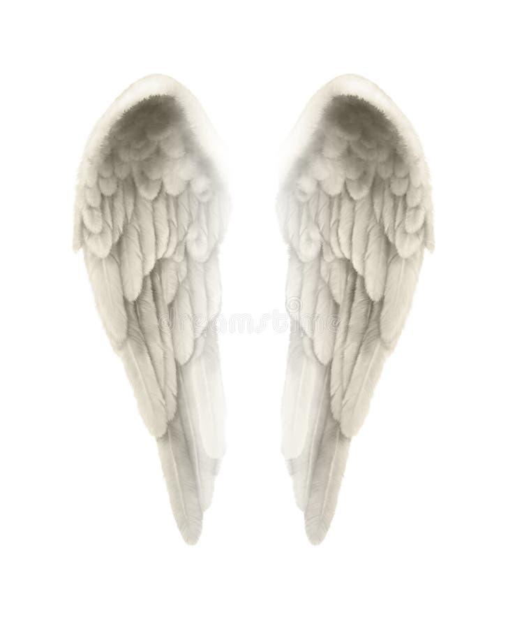 ilustração 3d de Angel Wings Isolated no fundo branco ilustração do vetor
