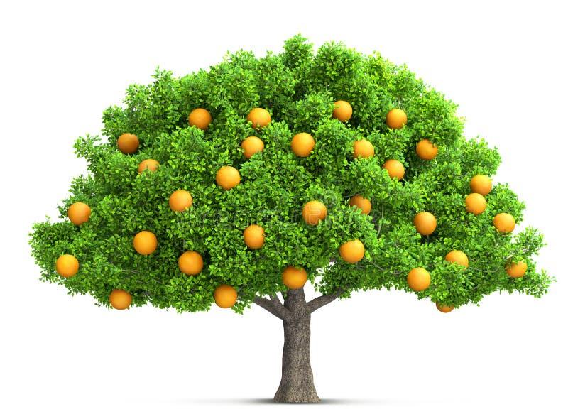 Ilustração 3D isolada da árvore alaranjada ilustração do vetor