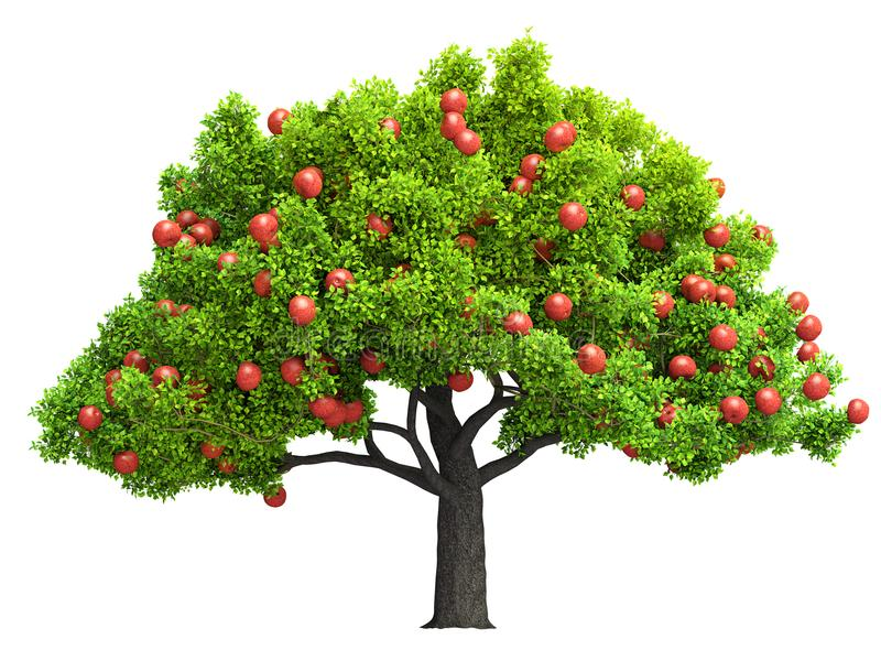 Ilustração 3D isolada vermelha da árvore de maçã ilustração stock